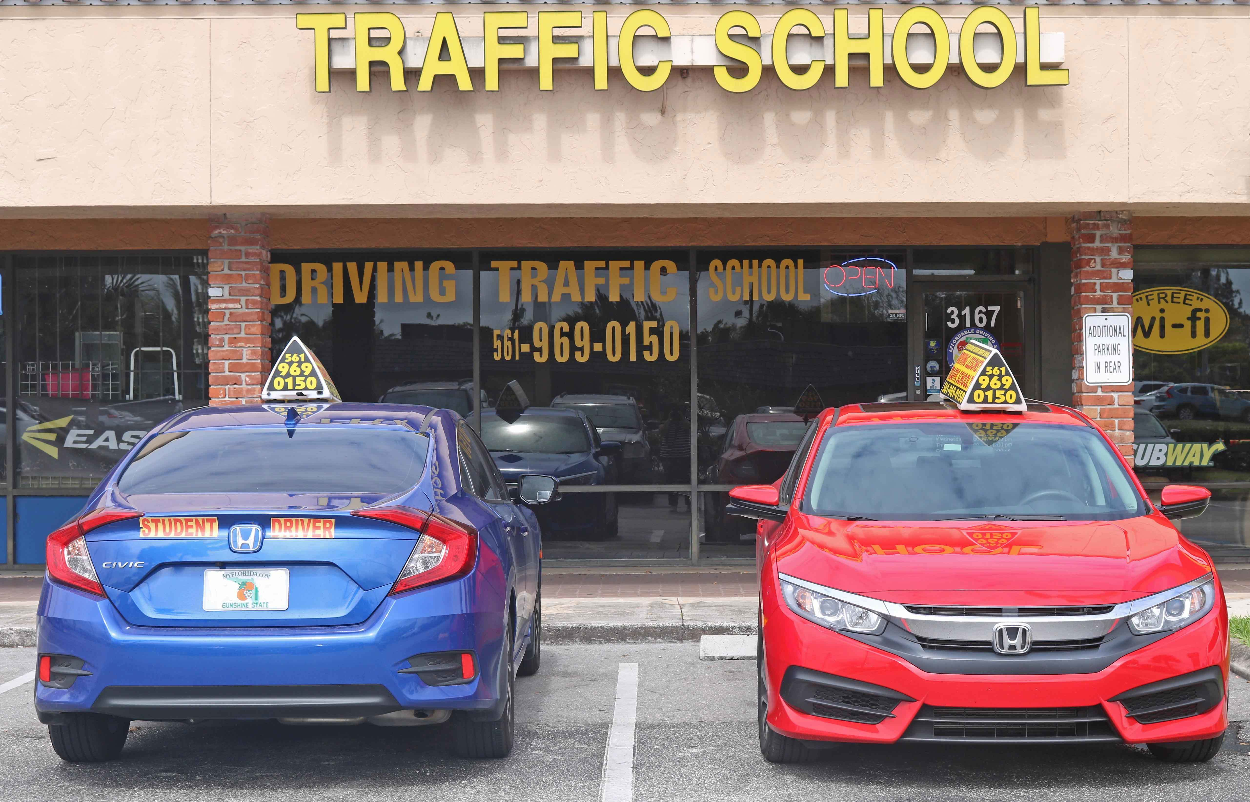 Driving Lessons In Palm Beach Driving School Driving Instruction