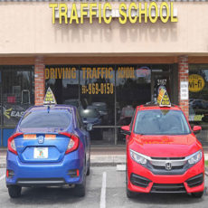 Driving Instruction Palm Beach  Affordable Driving School Cars